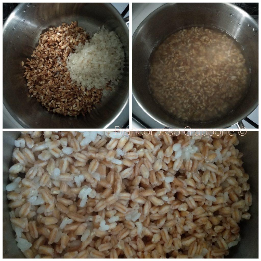 Preparazione del mugi-gohan